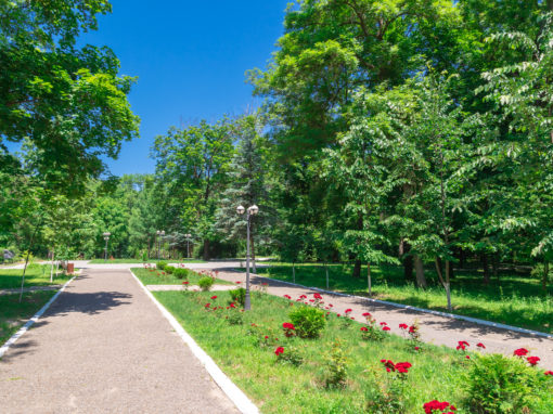 Park of Culture and Rest named after P.Kh. Wittgenstein